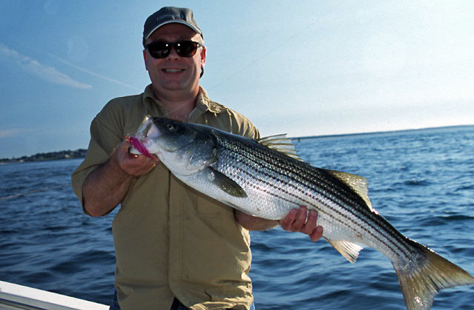 Ct ri sport fishing charters photo gallery for Ri fishing charters